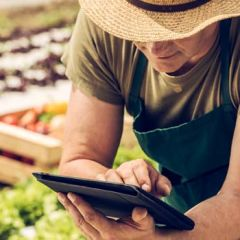 Farmer on tablet next to produce