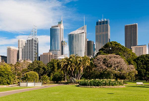 Sydney city and trees