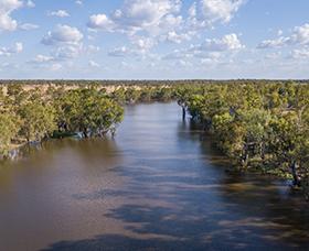 Dumaresq River in summer, NSW.