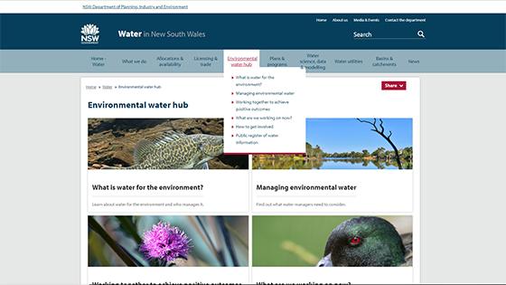 Environmental water hub