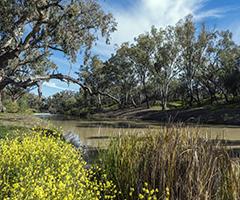 Namoi River at Walgett, New South Wales.