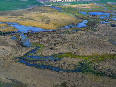 Gwydir wetlands in Moree, NSW.