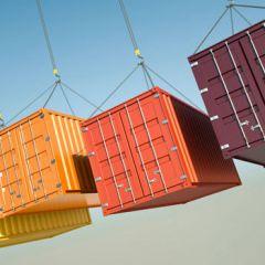 Export Capability Program