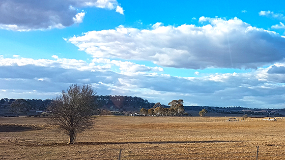 Drought in NSW North West