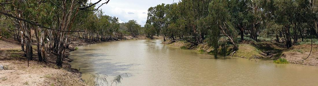 Barwon River near Brewarrina, NSW.