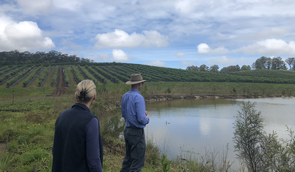 Water Regulator inspecting Coffs farms