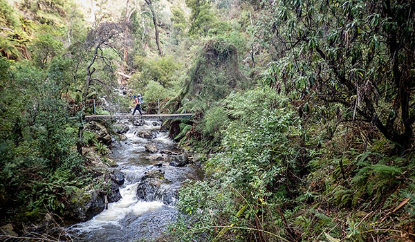 Hume and Hovell Track - Buddong Creek, south west of Talbingo (halfway between Tumut and Tumbarumba)
