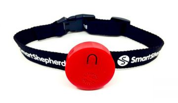 Smart Shepherd tag collar