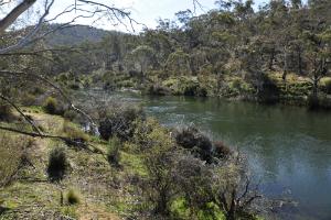 Site 1 - Jindabyne Gorge