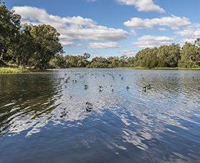 Scenic grounds of Mary Brand Park along the Mehi River in Moree.