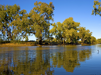 Macquarie river N.S.W. Australia, the river is a lifeline for a lot of farmers along the river using the water for animals and crops.