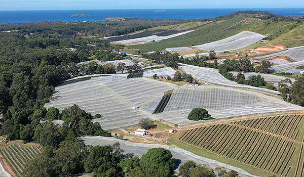 Coffs Harbour Horticulture Water Compliance Project