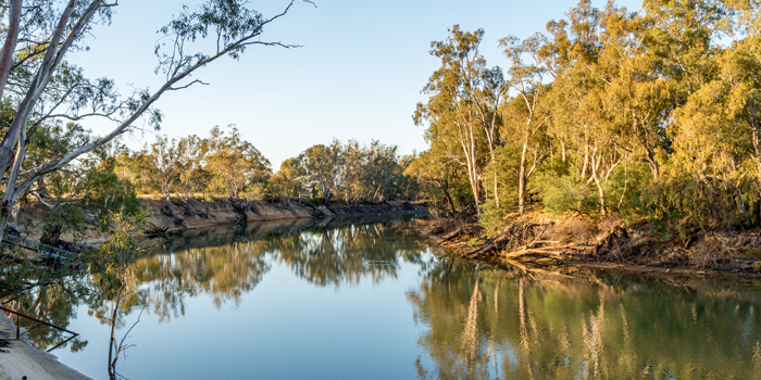 Murray River NSW