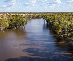Border Rivers FMP